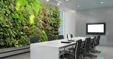 Use the green wall of the office